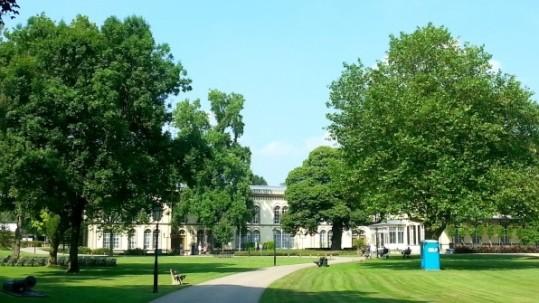 The trees of Bronbeek